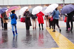 雨の日に傘をさす人々